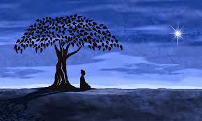 vipassana experience