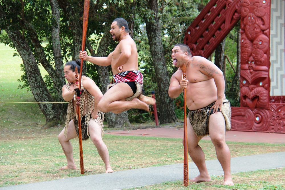 maori-113729_1920